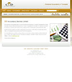 CED Accountancy Website